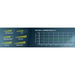 PAGID RACING Brake pads 8046 RSL19