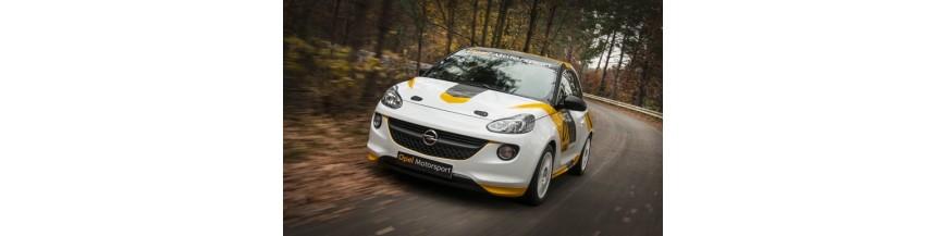 ADAM Rallye Cup 2012-- OPEL